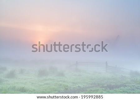 misty sunrise on Dutch farmland, Netherlands - stock photo