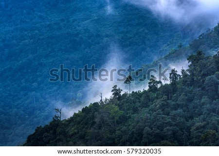 misty view point with mountain mist and fog road in phu tubberk most famous travel place in thailand
