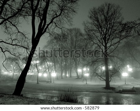 Misty winter evening in the park near the river - stock photo