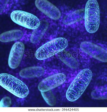 Mitochondria - microbiology 3d illustration - stock photo