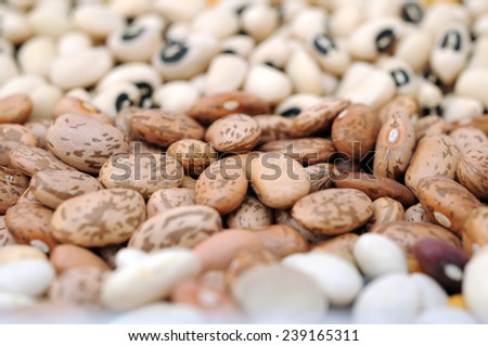mix bean focus on roman bean for background use