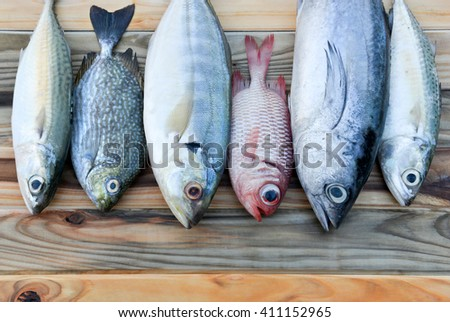 mix fresh indian mackerel fishes and other fishes for cooking from asian fishery market - stock photo