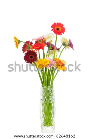Mix gerber flowers in the vase isolated on white background - stock photo