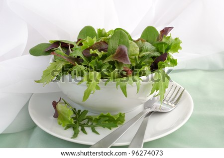 Mix of different varieties of lettuce (spinach, chard, Biondi, arugula, lettuce) - stock photo