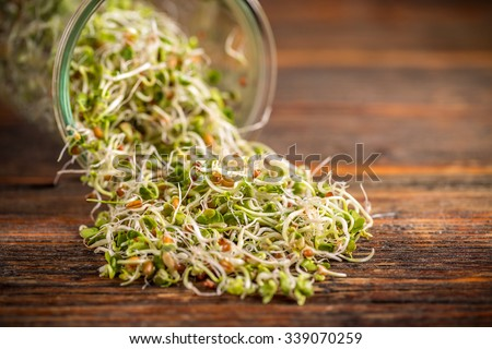 Mix of fresh sprouts in glass jar scattered on wooden board - stock photo