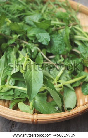 Mix of herb dill with peppermint and basil