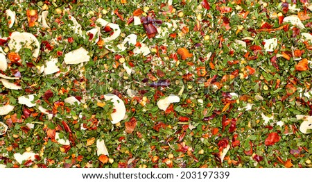Mix of herbs and spices forming a background pattern. Traditional mediterranean Italian seasoning mixture - stock photo