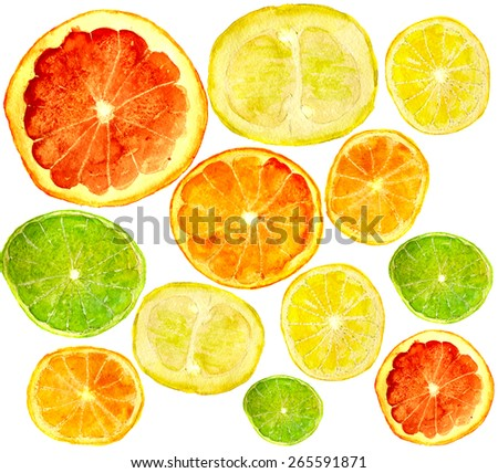 mix of juicy citrus fruits: grapefruit, orange, pomelo, lime, lemon, tangerine. Hand-painted in watercolor. - stock photo