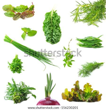 Mix organic salad leaves and salad onion springs - stock photo