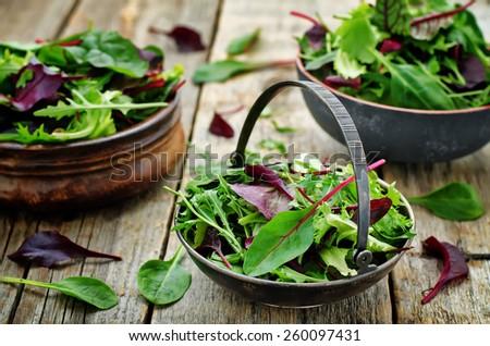 mix salad Romaine, arugula, spinach, mizuna, chard, oak salad on a dark wood background. tinting. selective focus - stock photo