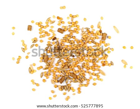 Mixed bird seed isolated on white