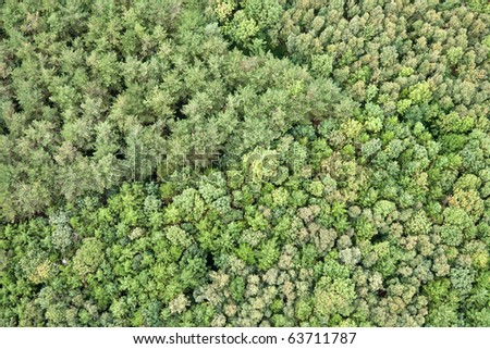 Mixed coniferous and broadleaved woodland seen from a hotair balloon - stock photo