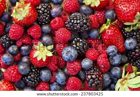 Mixed forest fruits - blueberries, raspberries, blackberries and strawberries - stock photo