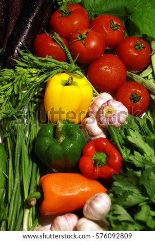 Mixed fresh vegetables and greens