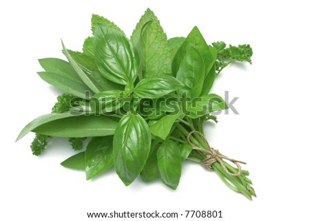 Mixed Herbs, basil, sage, parsley and mint, tied in a bunch with twine, isolated on white - stock photo