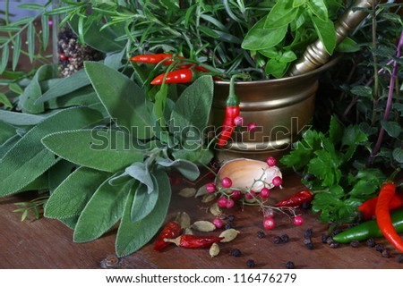 Mixed herbs of sage, rosemary, basil with red hot pepper in mortar with pestle - stock photo