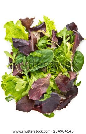 Mixed lettuce - stock photo