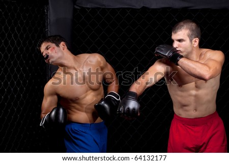 Mixed martial artists fighting - stock photo