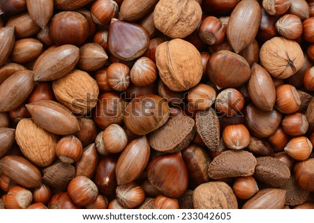 Mixed nuts - chestnuts, pecans, walnuts, brazil nuts and hazelnuts - as an abstract background texture - stock photo