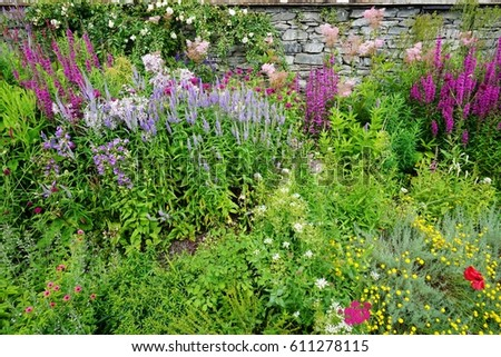 Mixed Perennial Flower Borders In A Traditional English Cottage Garden