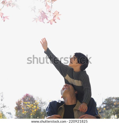 Mixed Race father and son in park - stock photo