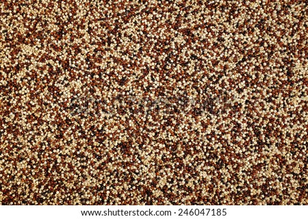 Mixed red, white and black quinoa as an abstract background texture - stock photo