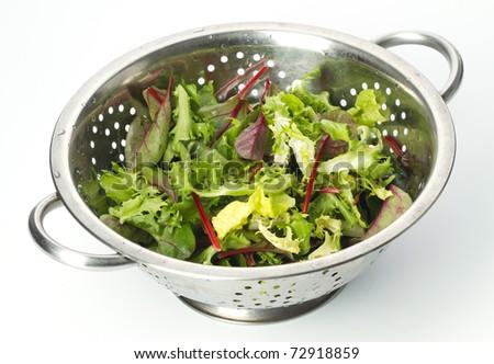 Mixed Salad leaves on white background - stock photo