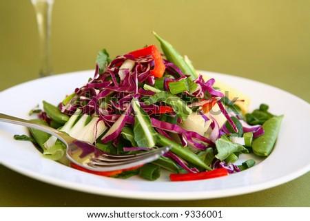 Mixed Salad Ready to Eat - stock photo