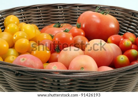 Mixture of different kinds of tomatoes in the basket. - stock photo