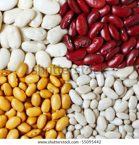 Mixture of four different types and colors of beans - stock photo