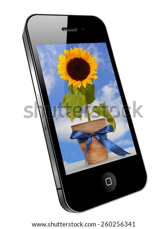 Mobile phone image on the screen - sunflower. - stock photo