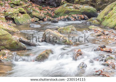 Moccasin Creek, a whitewater creek  on the, Hemlock Falls hiking trail, in autumn.