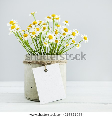 Mock up. Bouquet of daisy-chamomile flowers in concrete pot in the morning. with empty gift tag. - stock photo