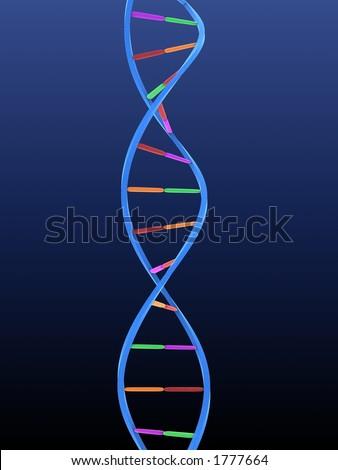 model of DNA - stock photo