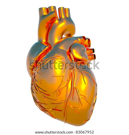 Model of human heart - heart of gold - stock photo