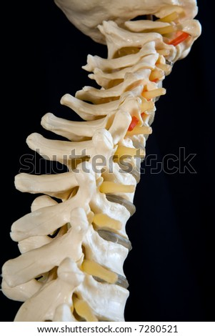 Model of human with full DOF. - stock photo