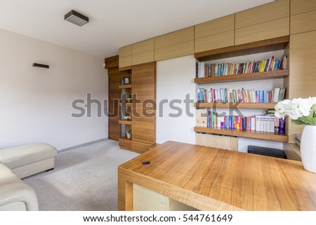 modern and cozy living room with bookcase