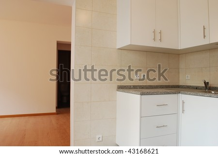 modern and small kitchen in white (wooden floor)