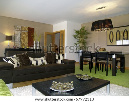 Modern apartment living room decoration - stock photo