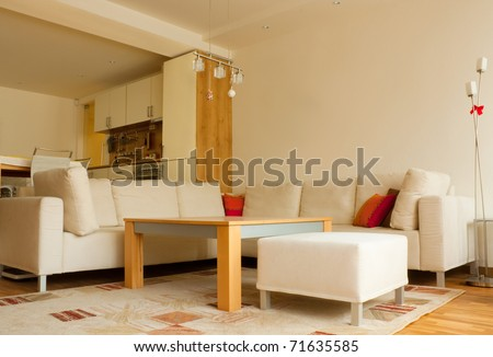 Modern apartment living room.interior design - stock photo