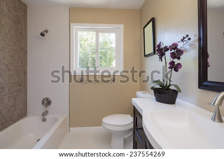 Modern bathroom with view window and flower - stock photo