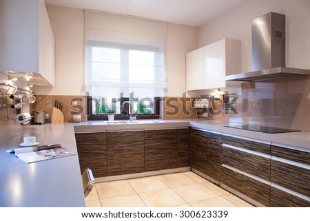 Modern brown furniture in beauty designed kitchen - stock photo
