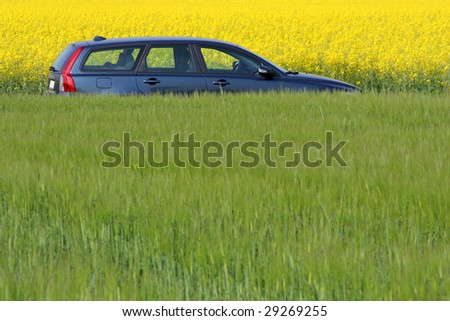Modern car between yellow and green fields - stock photo