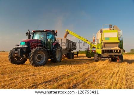 Modern combine harvester unloading grain into the trucks trailer on sunny summer day. - stock photo
