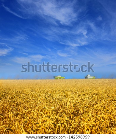 Modern combines work in a wheat field - stock photo