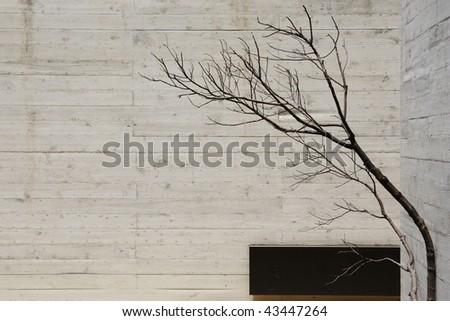 modern concrete interior - stock photo