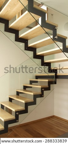 Modern designed stairs made of wood and glass