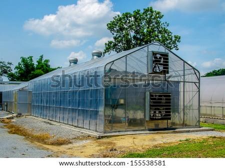 Modern green house - stock photo
