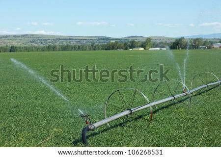 Modern Irrigation System Farm Stock Photo 106268531 - Shutterstock