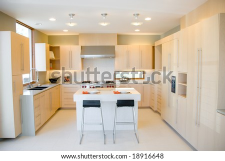Modern Kitchen Design with High End Appliances and Birch Wood